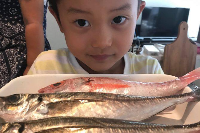 漁港とオンラインでつなぐお魚捌きレッスン~開催レポート