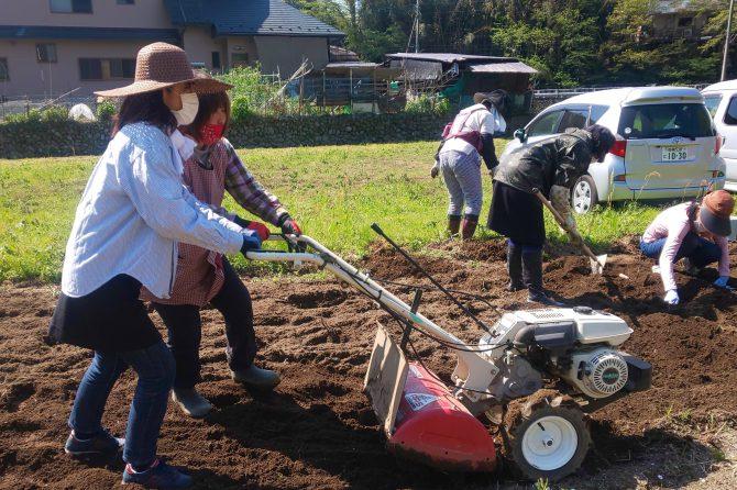 畑作業は初めてがいっぱい!~清川村よってけさん×ワクワクワーク里山プロジェクト