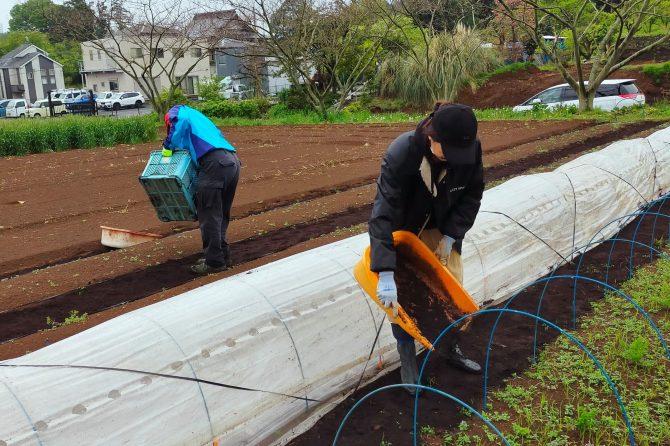 しっとりふわふわな土や堆肥で癒される~たねのこプロジェクト