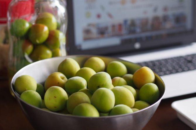 【予告】今年も開催します♪「愛足るベジタブル」さんの梅でシロップを仕込もう!~季節の手仕事クラスオンライン