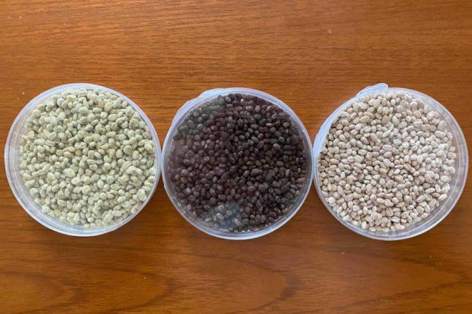 日本の風土と麹の関係を知ることができました!~「発酵マニア講座2」開催レポート