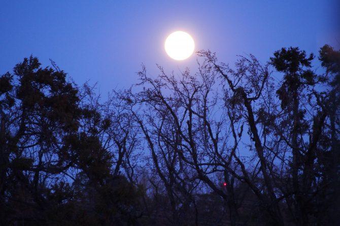 最も美しい月!「中秋の名月」とは?